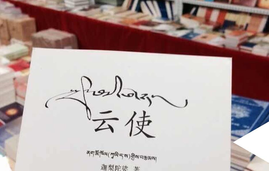 西藏的书店,经常会看到一些有趣的书籍,只要是以前没有接触过的文化,Miss都 非常感兴趣。